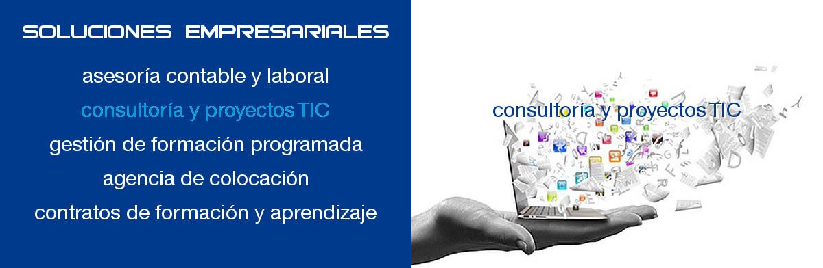 infornavas.es consultoria proyectos TIC